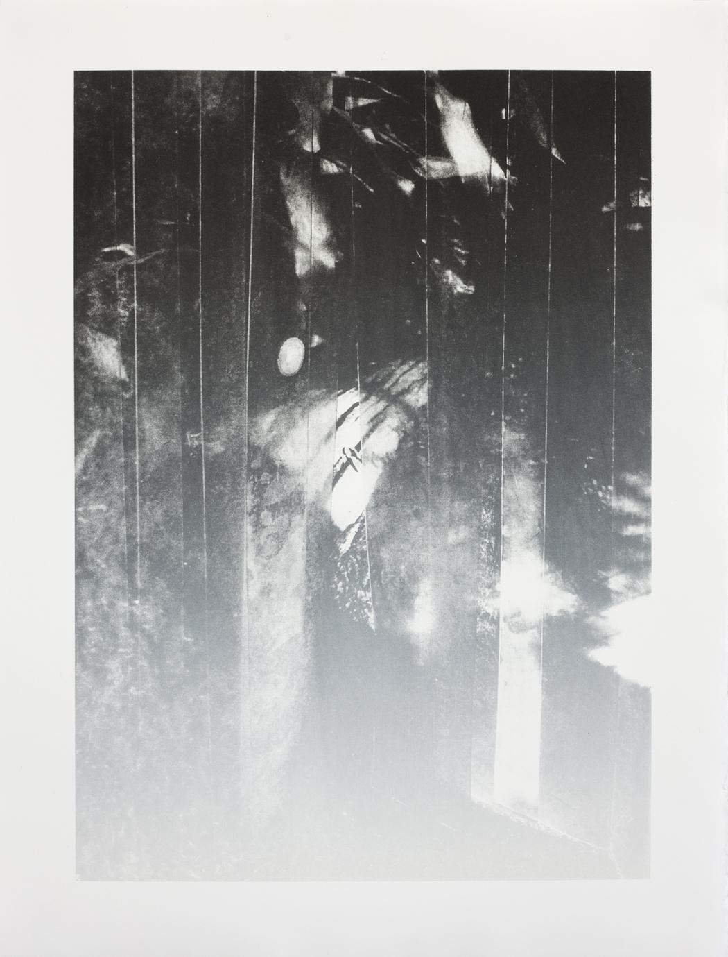 o. T., 2016, Lithografie auf Papier, 46,7 x 35 cm