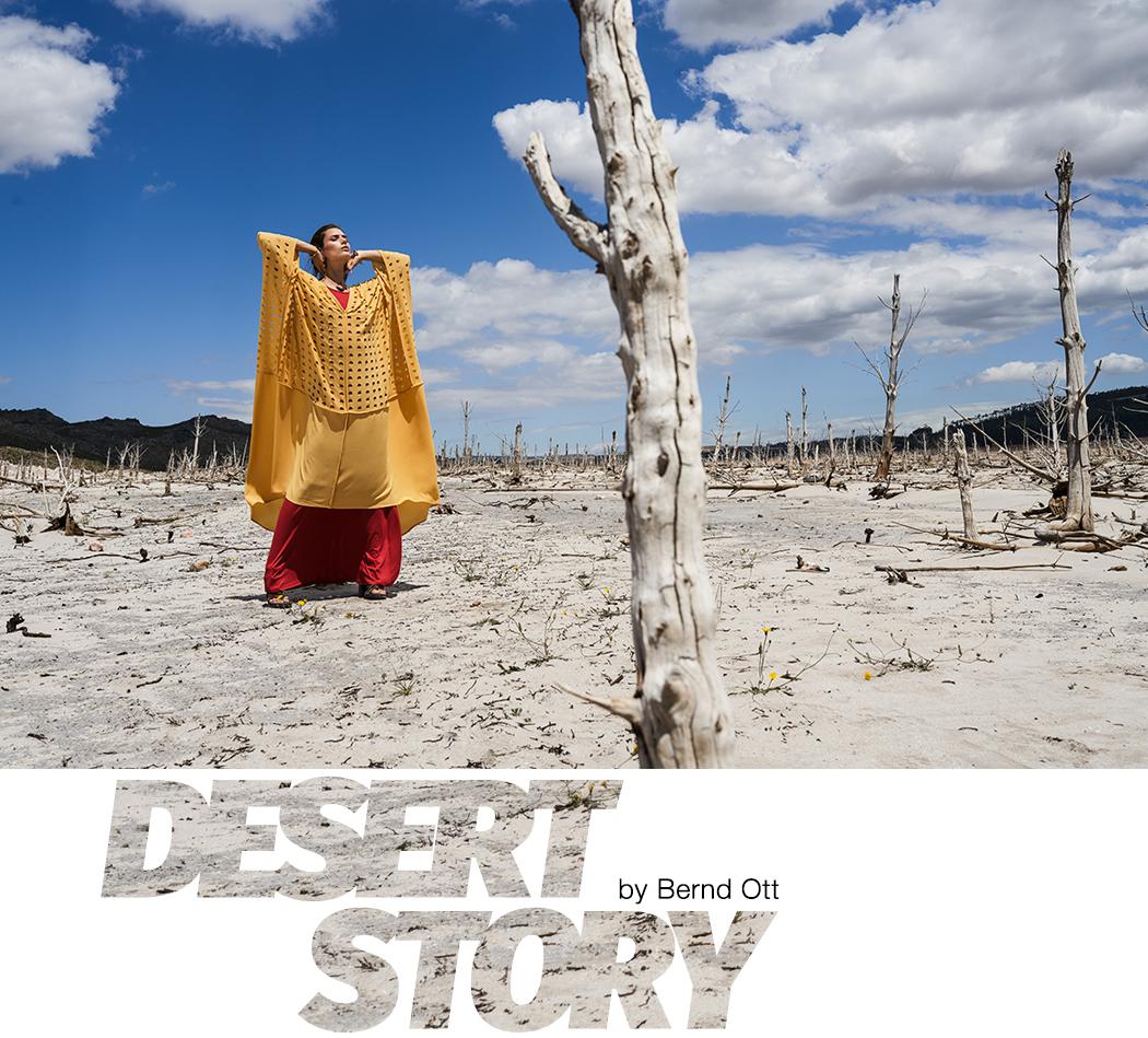 Desert Story