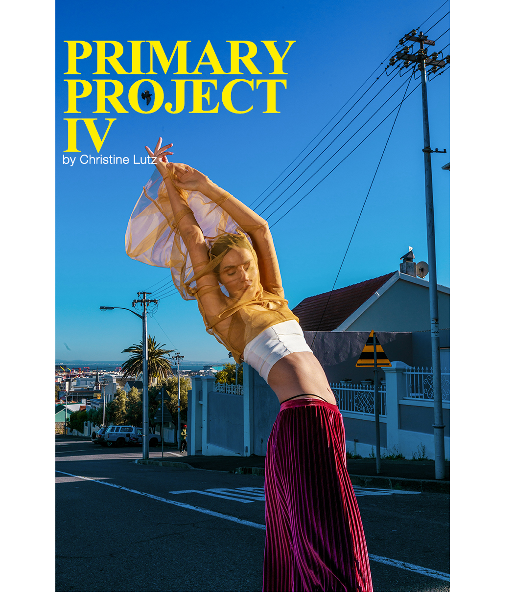 Primary Project IV